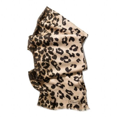 coach-khaki-ocelot-oblong-scarf-product-1-12012946-854081728_large_flex